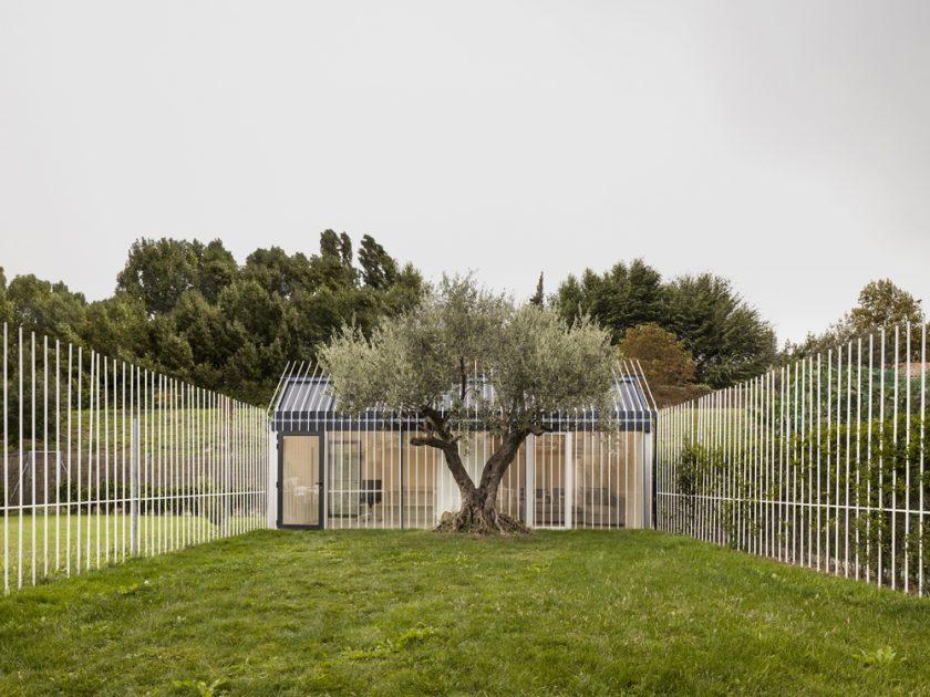 Casa para un hombre y árbol, situada en Mutilva (Navarra). Fotografía C Pedro Pegenaute