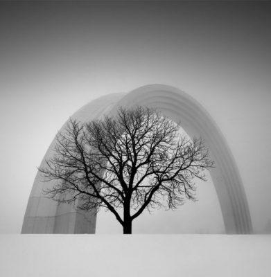 """""""Arco de la Amistad de las personas"""" (People's Friendship Arch) por Oleksandr Nesterovskyi en Kiev, Ucrania. """"La foto muestra la combinación de naturaleza y arquitectura, la armonía en la combinación de altura de un arco de titanio de 30 metros y un árbol""""."""