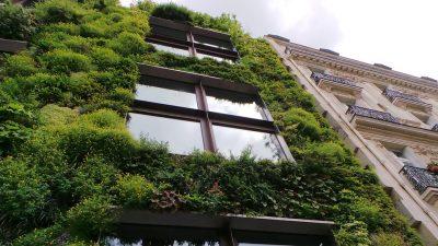 const_sostenible2
