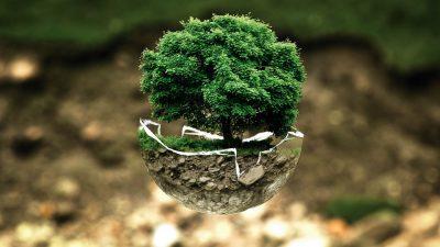 sostenibilidad_2
