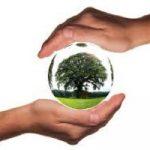 Los materiales de construcción sostenibles, esenciales para una construcción más responsable y limpia
