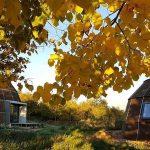 Nuevas viviendas sostenibles: la cúpula de madera eficiente y ecológica