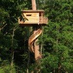 5 cabañas en los árboles para disfrutar de una experiencia sostenible en España
