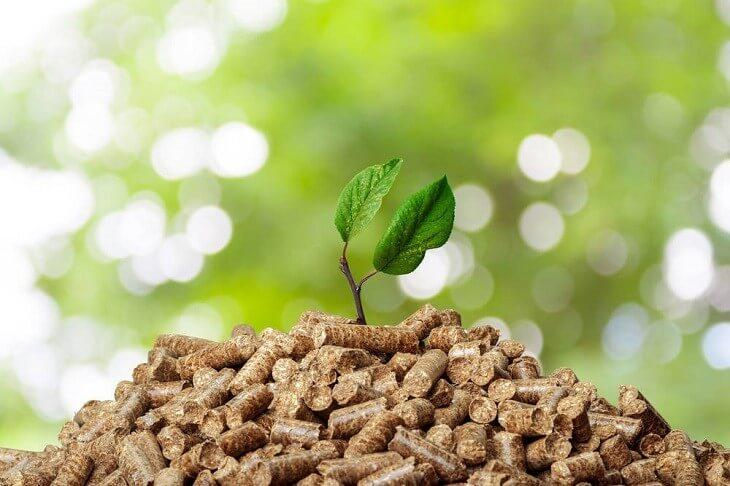 Biomasa | Arquitectura Sostenible