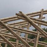 El bambú en las estructuras