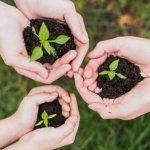 Andalucía contará en el 2020 con un sello verde para certificar la sostenibilidad de sus infraestructuras