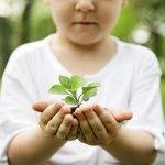 Claves para una vuelta al cole sostenible