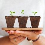 Ideas de regalos sostenibles para estas Navidades