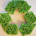 5 claves de la arquitectura circular