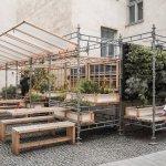 Un proyecto pionero para cultivar plantas comestibles en patios áridos